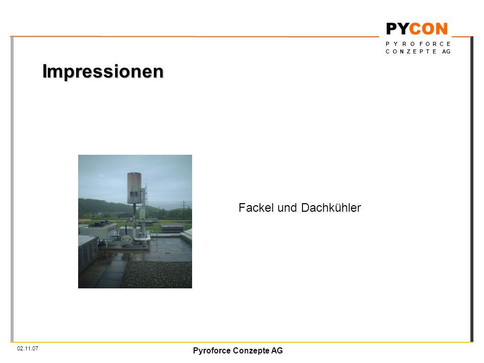 Impressionen Fackel und Dachkühler 02.11.07