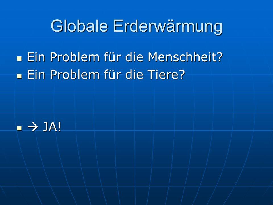 Globale Erderwärmung Ein Problem für die Menschheit