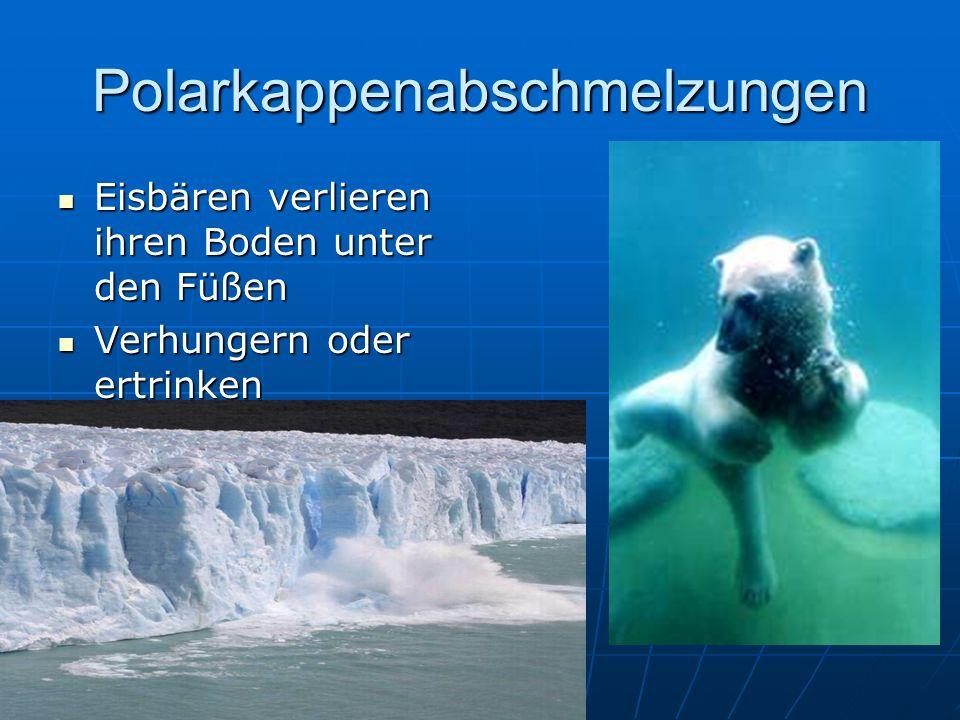 Polarkappenabschmelzungen