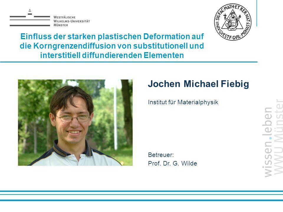 Jochen Michael Fiebig Einfluss der starken plastischen Deformation auf