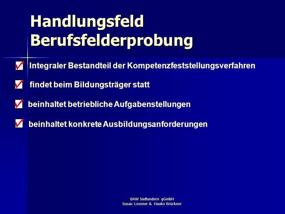 BAW Südtondern gGmbH Susan Lesener & Hauke Brückner