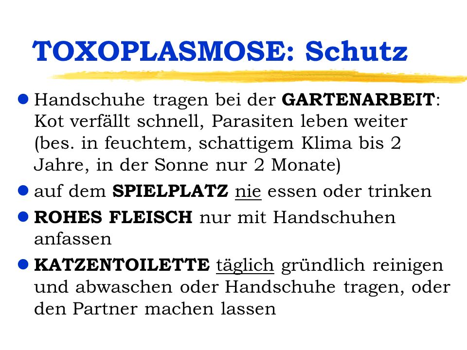 TOXOPLASMOSE: Schutz