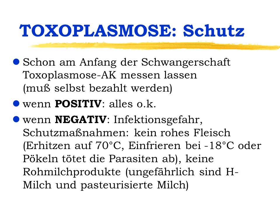 TOXOPLASMOSE: Schutz Schon am Anfang der Schwangerschaft Toxoplasmose-AK messen lassen (muß selbst bezahlt werden)