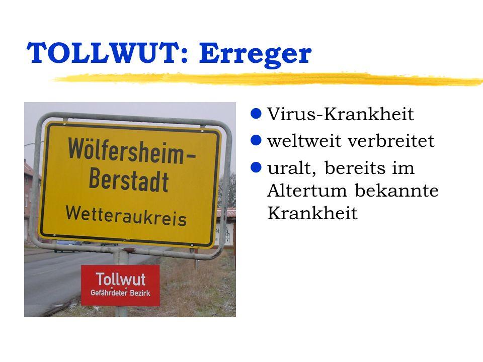 TOLLWUT: Erreger Virus-Krankheit weltweit verbreitet