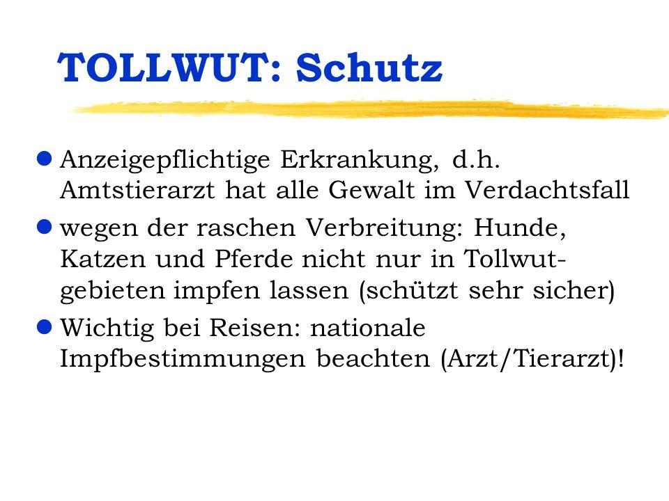 TOLLWUT: Schutz Anzeigepflichtige Erkrankung, d.h. Amtstierarzt hat alle Gewalt im Verdachtsfall.