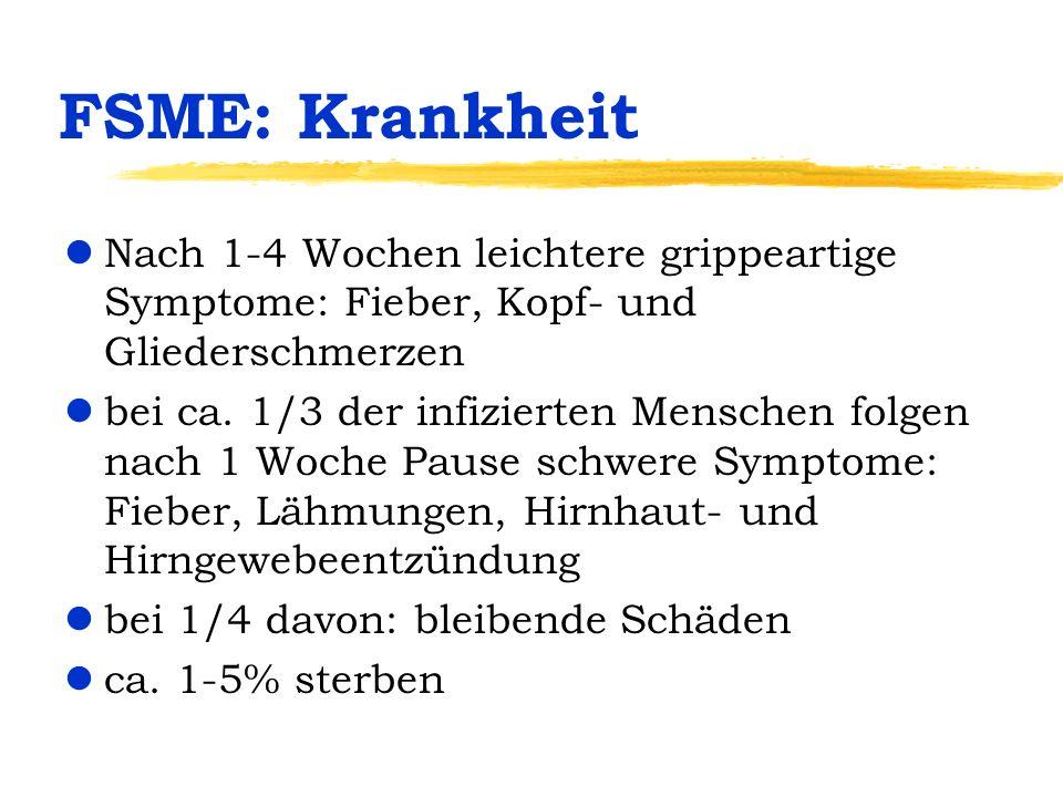 FSME: Krankheit Nach 1-4 Wochen leichtere grippeartige Symptome: Fieber, Kopf- und Gliederschmerzen.