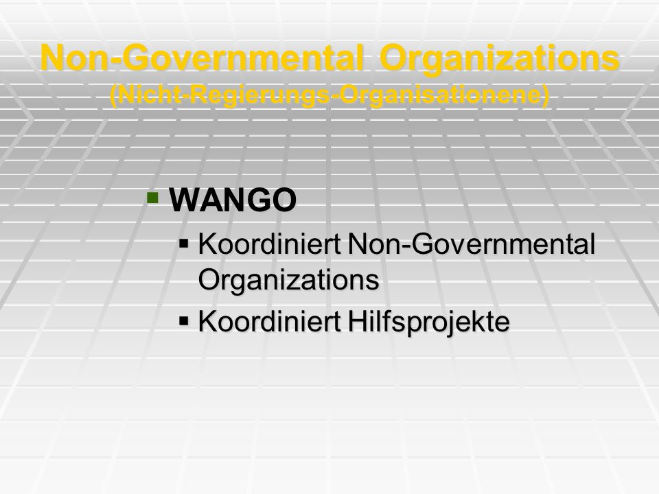 Non-Governmental Organizations (Nicht-Regierungs-Organisationene)