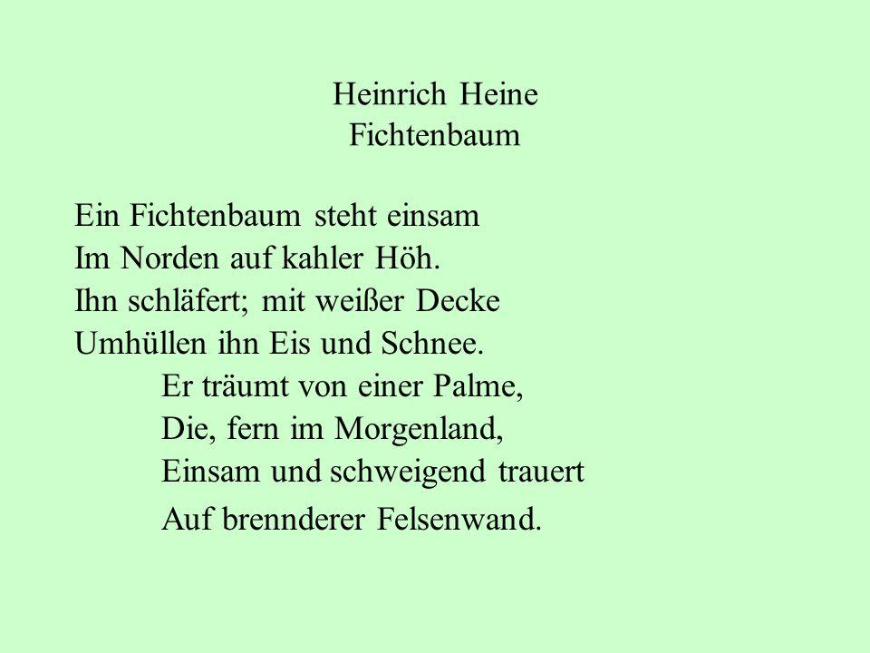 Heinrich Heine Fichtenbaum