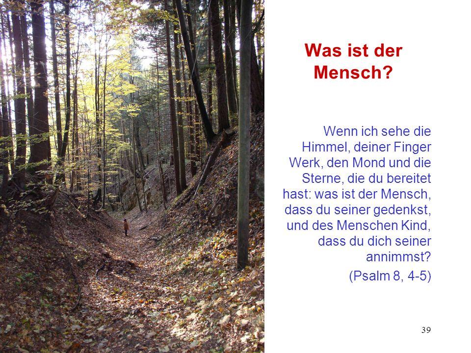 Glaubensentwicklung - Vorlesung Prof. Dr. Ulrich Schwab, WS 2002/03