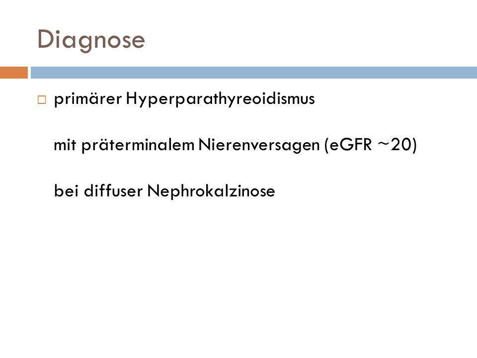 Diagnose primärer Hyperparathyreoidismus mit präterminalem Nierenversagen (eGFR ~20) bei diffuser Nephrokalzinose.