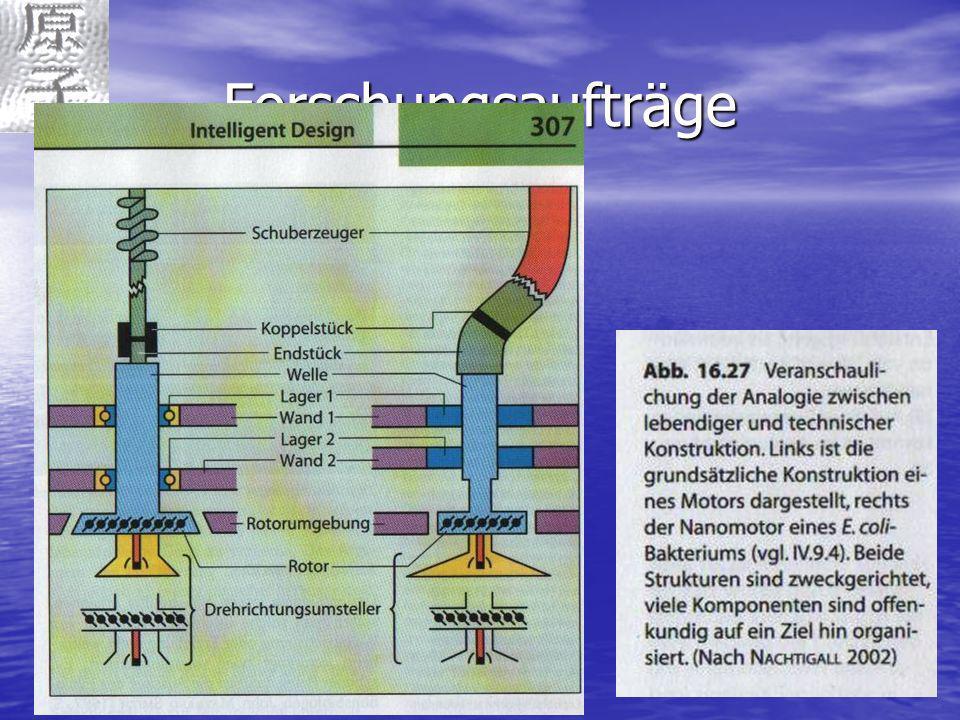 Forschungsaufträge Nanomotor bei Bakterien Nanotechnologie