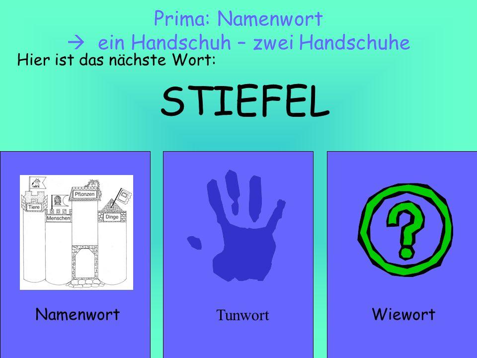 Prima: Namenwort  ein Handschuh – zwei Handschuhe
