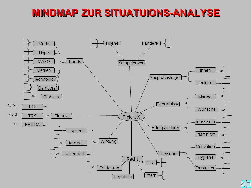 MINDMAP ZUR SITUATUIONS-ANALYSE