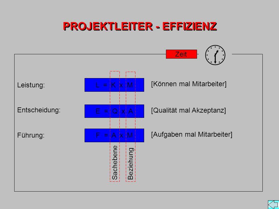 PROJEKTLEITER - EFFIZIENZ