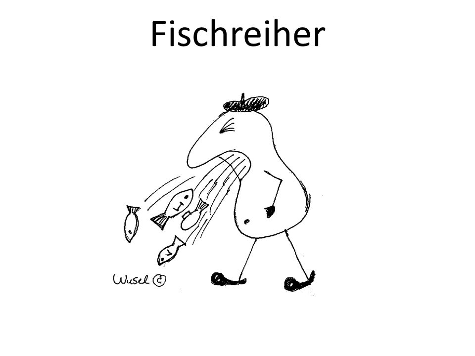 Fischreiher