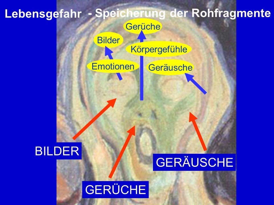 BILDER GERÄUSCHE GERÜCHE Lebensgefahr - Speicherung der Rohfragmente