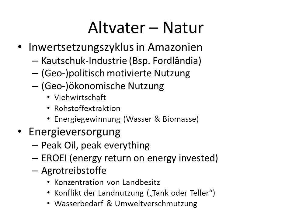 Altvater – Natur Inwertsetzungszyklus in Amazonien Energieversorgung