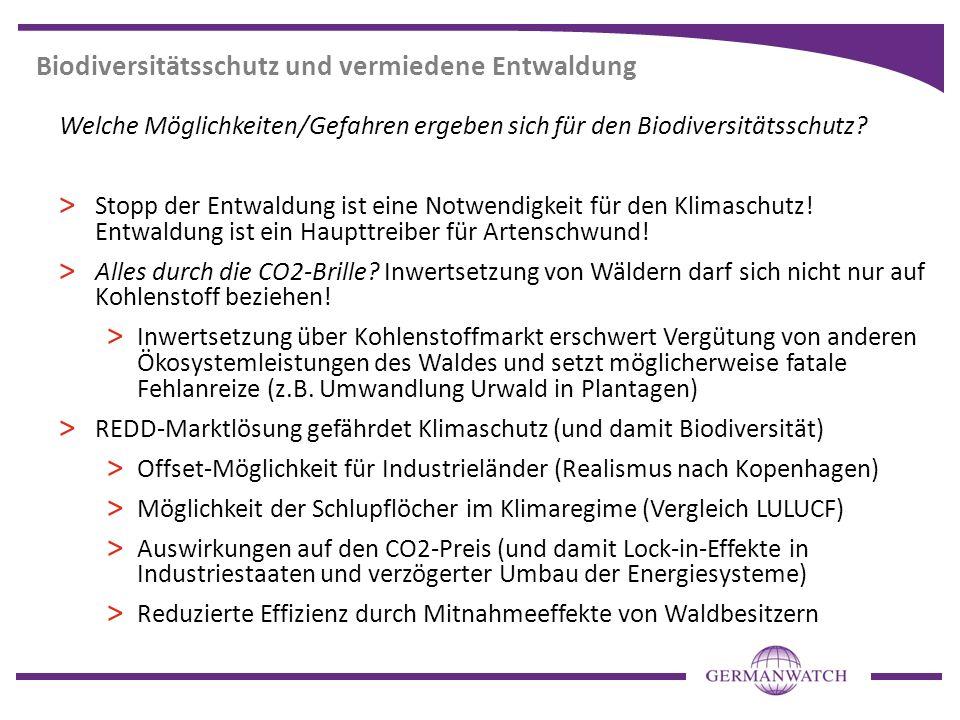 Biodiversitätsschutz und vermiedene Entwaldung