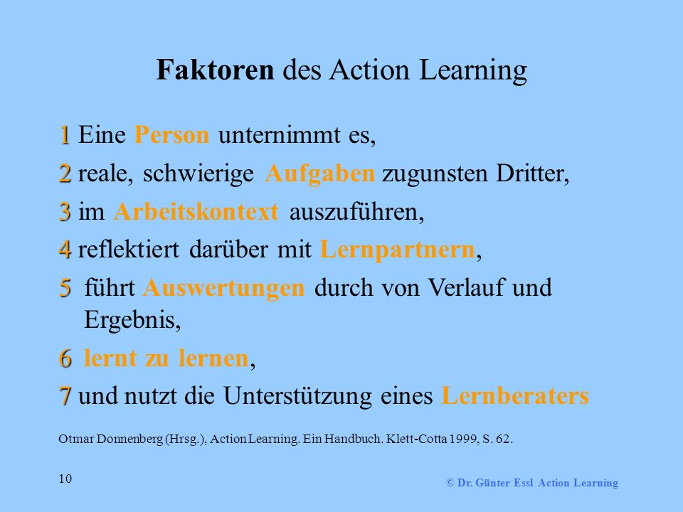 Faktoren des Action Learning
