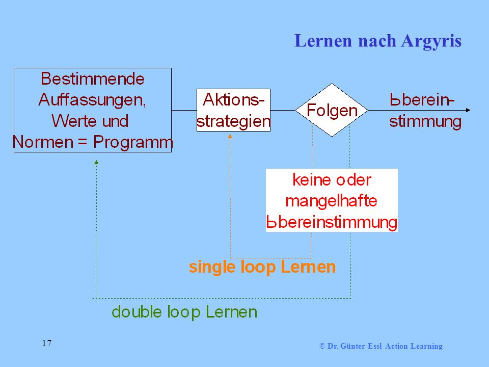 Lernen nach Argyris 17