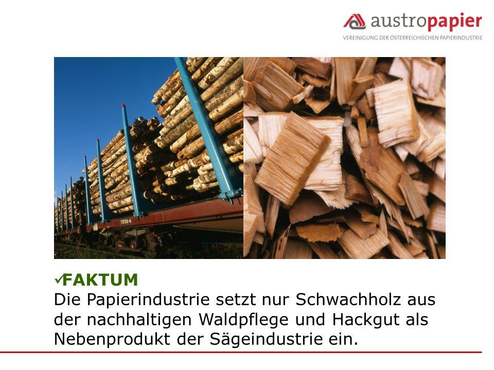 FAKTUM Die Papierindustrie setzt nur Schwachholz aus der nachhaltigen Waldpflege und Hackgut als Nebenprodukt der Sägeindustrie ein.