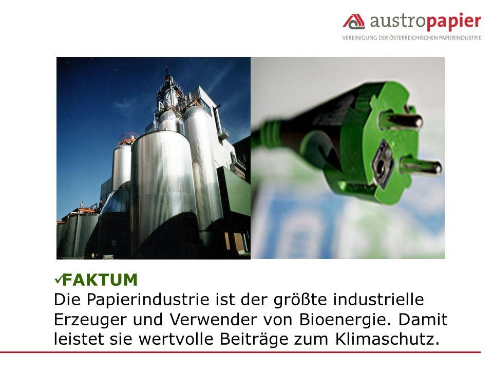 FAKTUM Die Papierindustrie ist der größte industrielle Erzeuger und Verwender von Bioenergie.