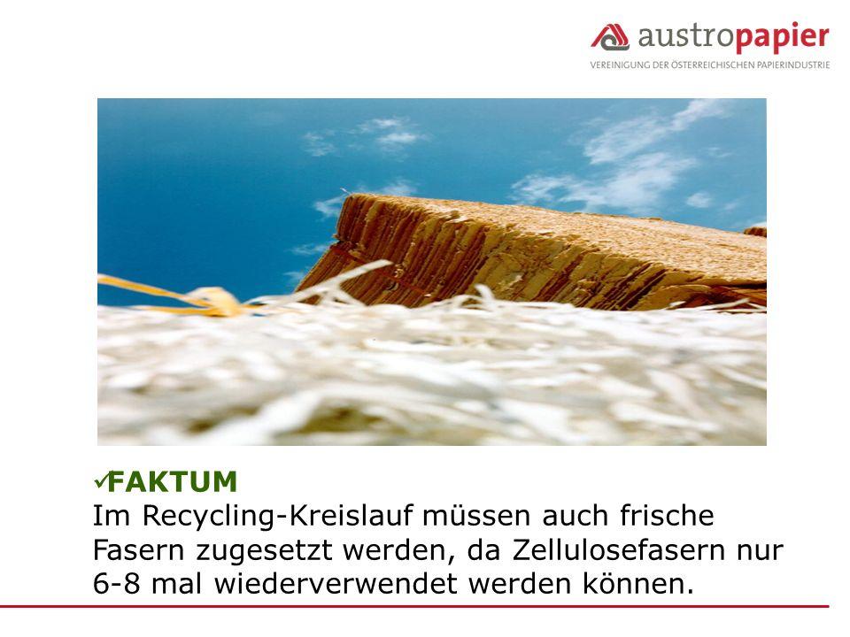 FAKTUM Im Recycling-Kreislauf müssen auch frische Fasern zugesetzt werden, da Zellulosefasern nur 6-8 mal wiederverwendet werden können.