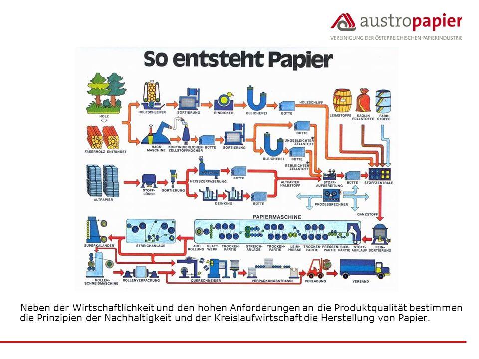 Neben der Wirtschaftlichkeit und den hohen Anforderungen an die Produktqualität bestimmen die Prinzipien der Nachhaltigkeit und der Kreislaufwirtschaft die Herstellung von Papier.