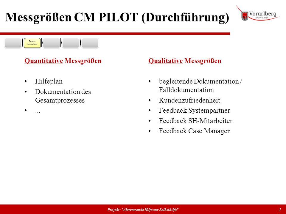 Messgrößen CM PILOT (Durchführung)
