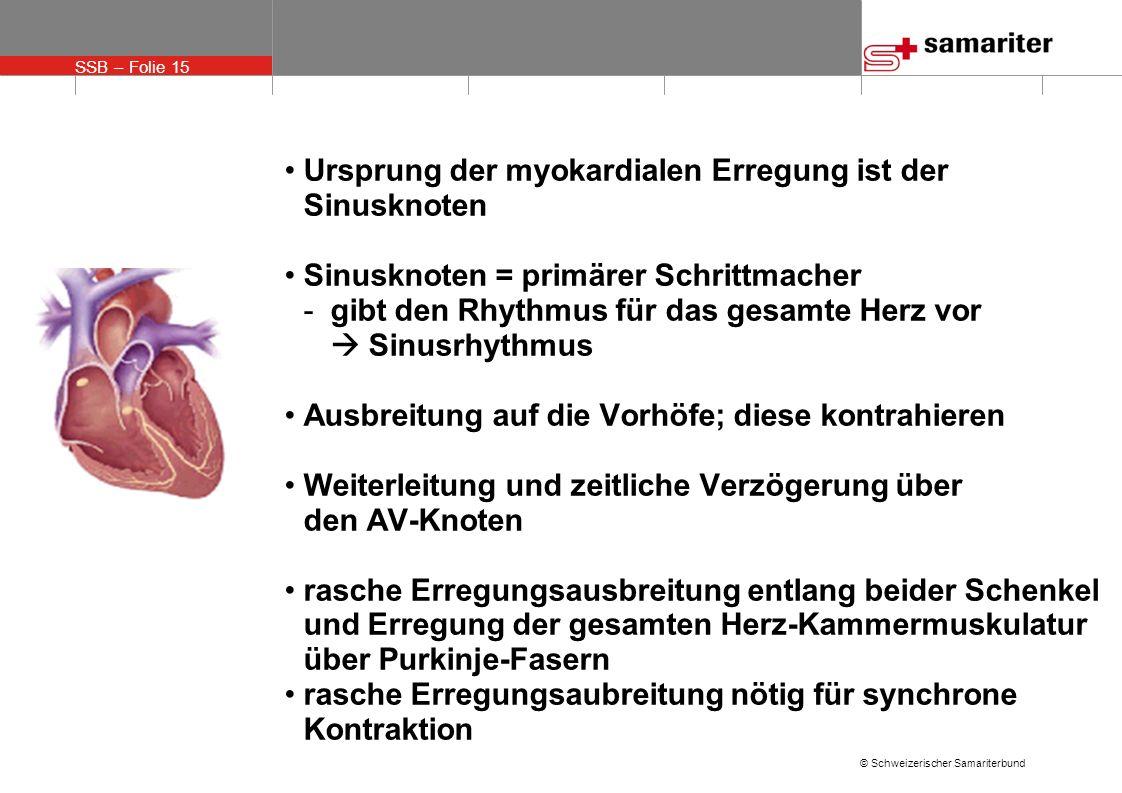 Ursprung der myokardialen Erregung ist der