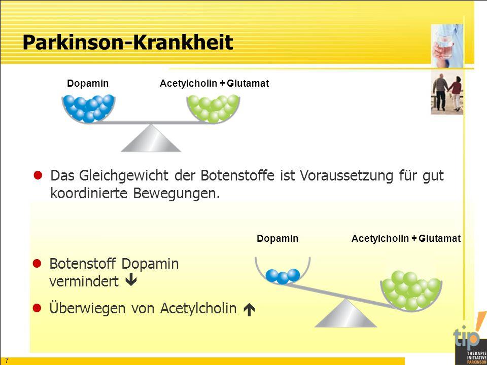Acetylcholin + Glutamat Acetylcholin + Glutamat