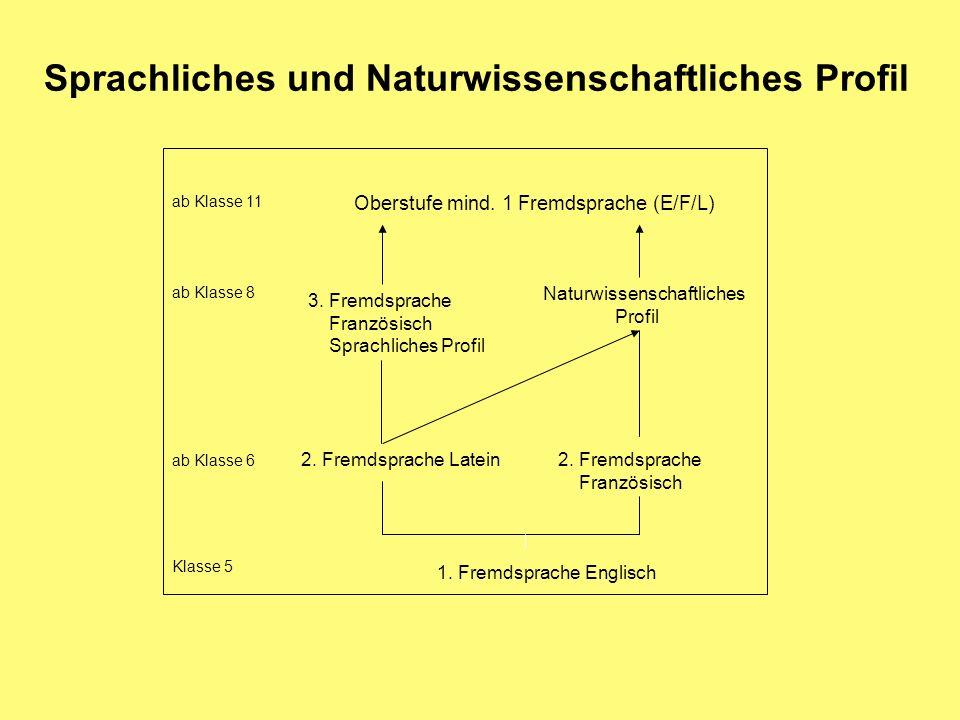 Sprachliches und Naturwissenschaftliches Profil