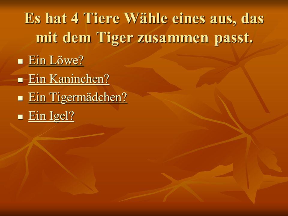 Es hat 4 Tiere Wähle eines aus, das mit dem Tiger zusammen passt.