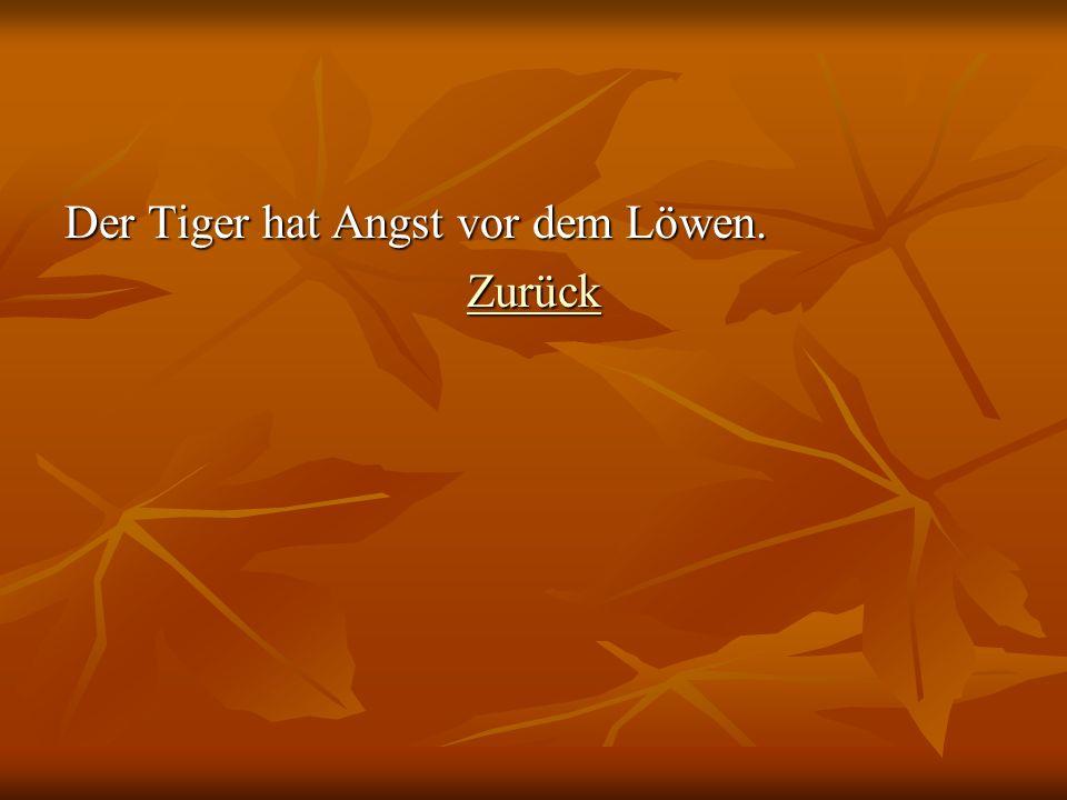 Der Tiger hat Angst vor dem Löwen.