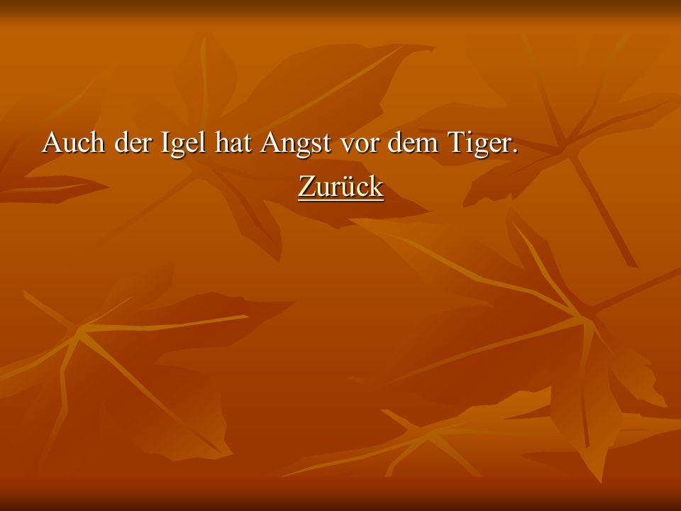 Auch der Igel hat Angst vor dem Tiger.