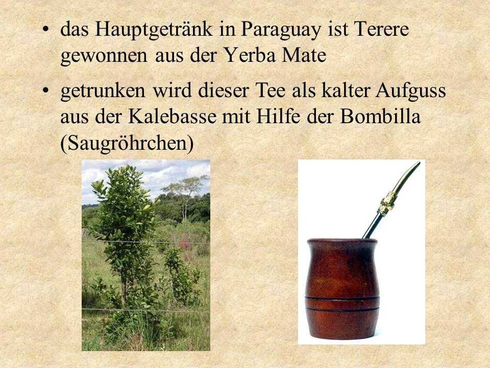 das Hauptgetränk in Paraguay ist Terere gewonnen aus der Yerba Mate