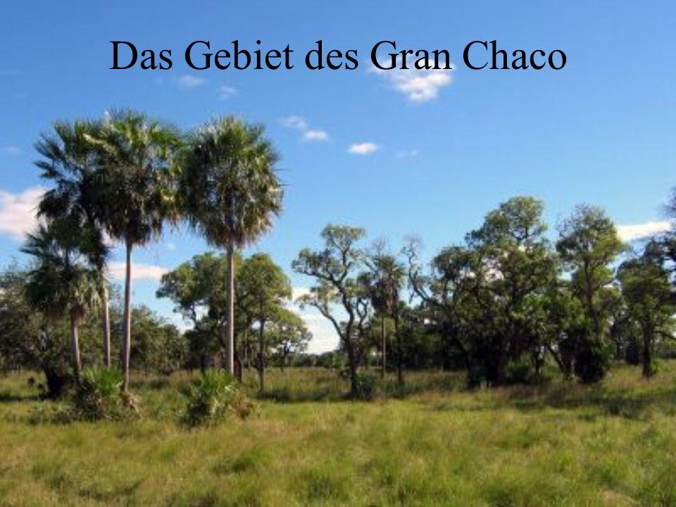 Das Gebiet des Gran Chaco