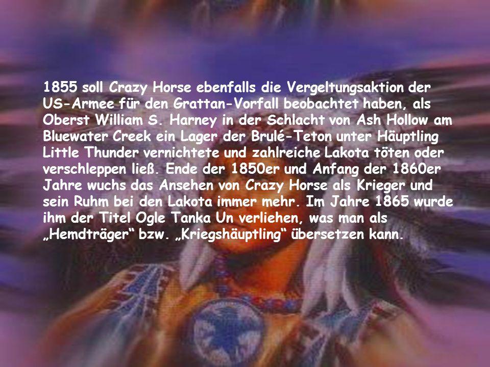 1855 soll Crazy Horse ebenfalls die Vergeltungsaktion der US-Armee für den Grattan-Vorfall beobachtet haben, als Oberst William S.