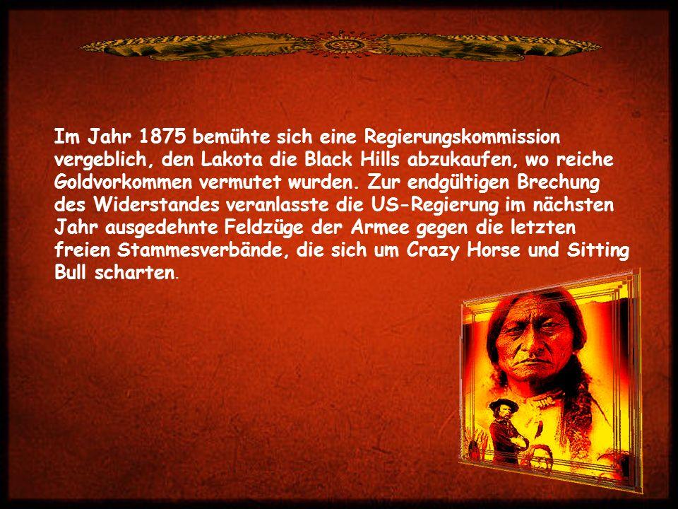 Im Jahr 1875 bemühte sich eine Regierungskommission vergeblich, den Lakota die Black Hills abzukaufen, wo reiche Goldvorkommen vermutet wurden.