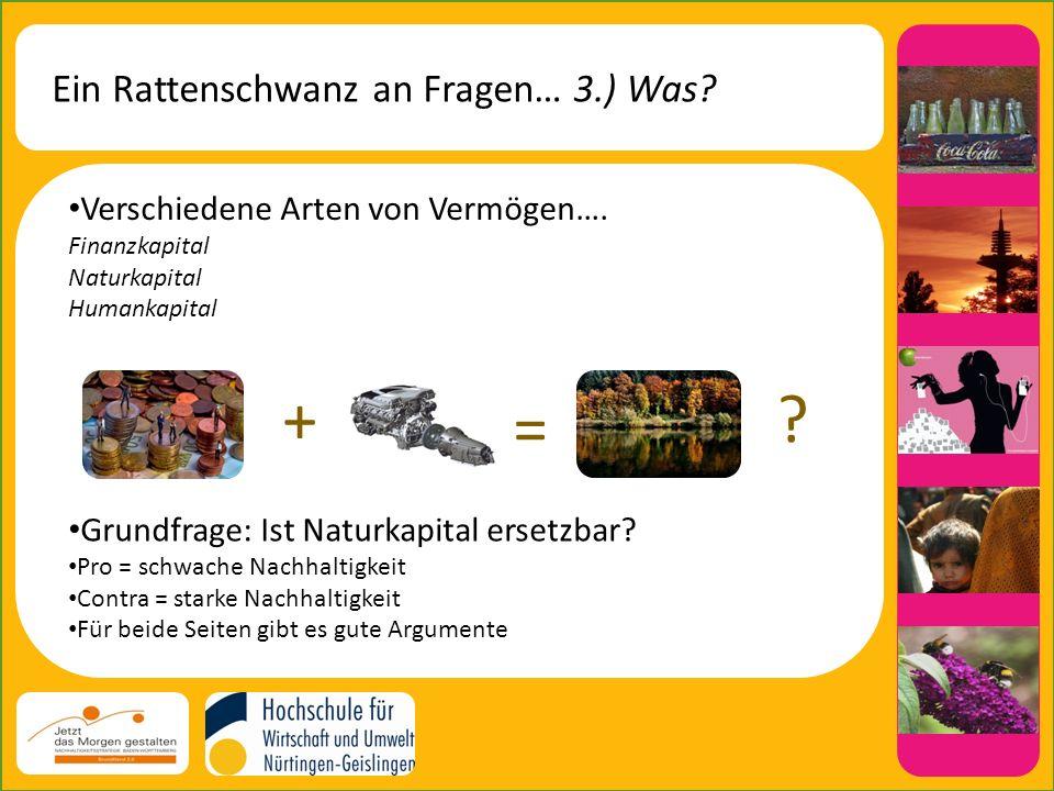 + = Ein Rattenschwanz an Fragen… 3.) Was