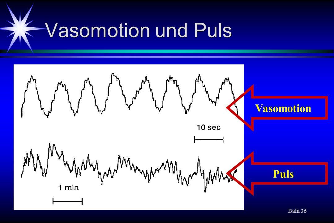 Vasomotion und Puls Vasomotion Puls