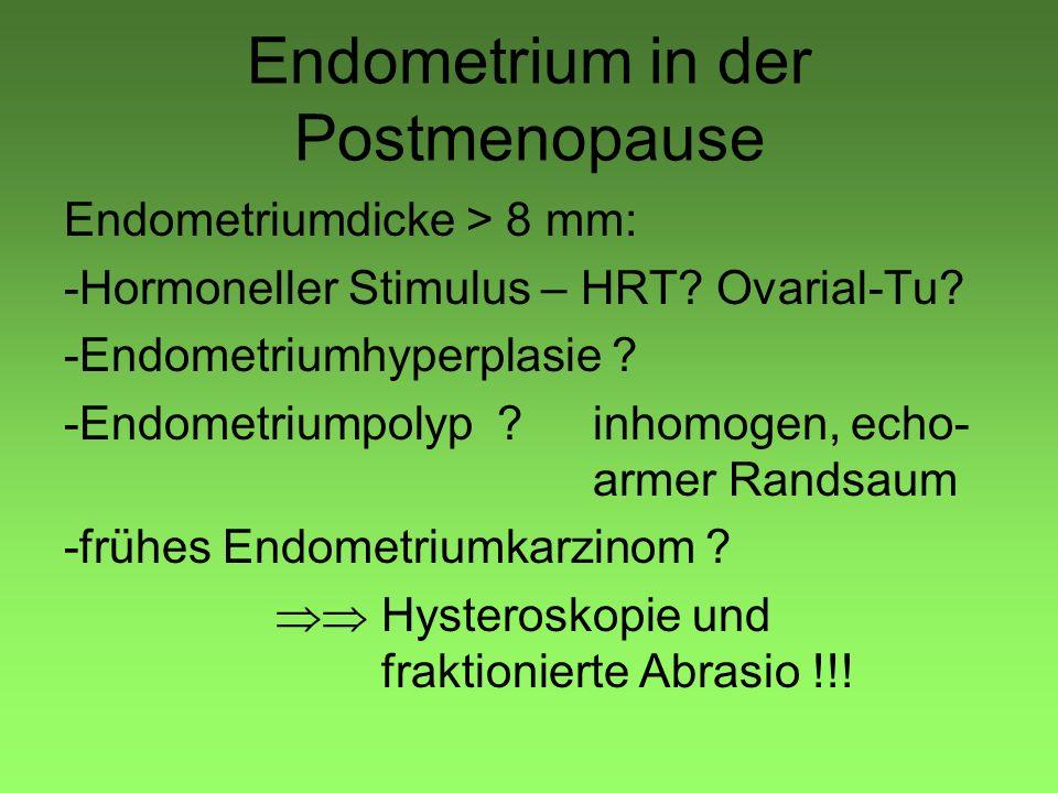 Endometrium in der Postmenopause
