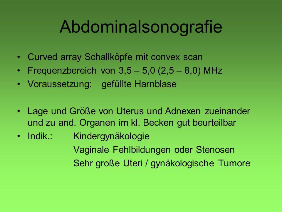 Abdominalsonografie Curved array Schallköpfe mit convex scan