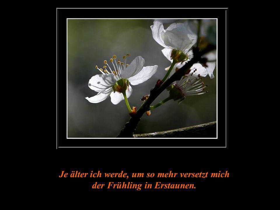 Je älter ich werde, um so mehr versetzt mich der Frühling in Erstaunen.