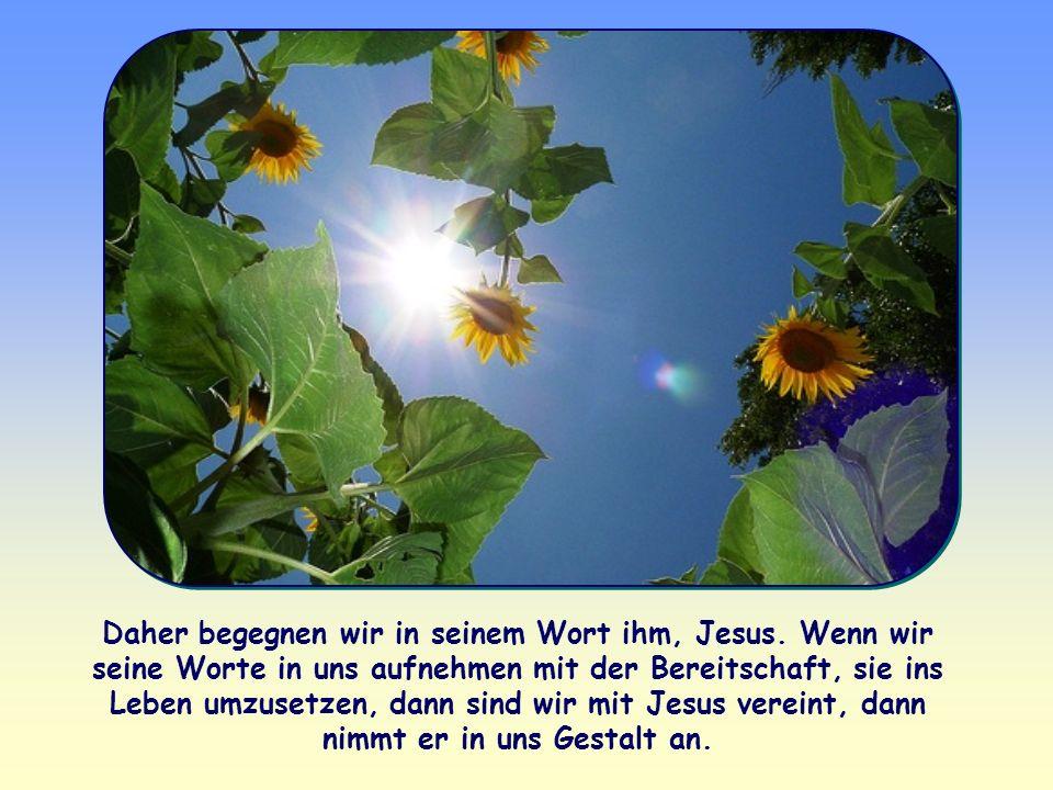 Daher begegnen wir in seinem Wort ihm, Jesus