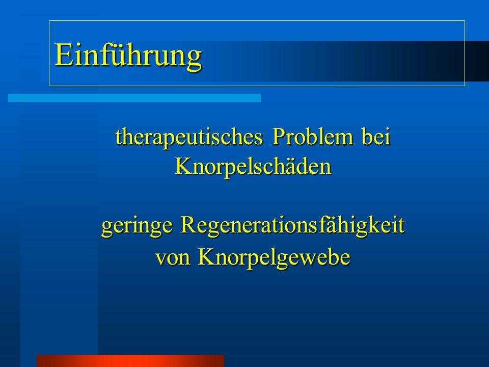 Einführung therapeutisches Problem bei Knorpelschäden
