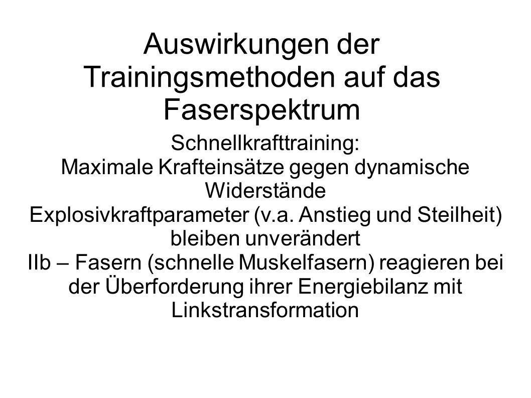 Auswirkungen der Trainingsmethoden auf das Faserspektrum