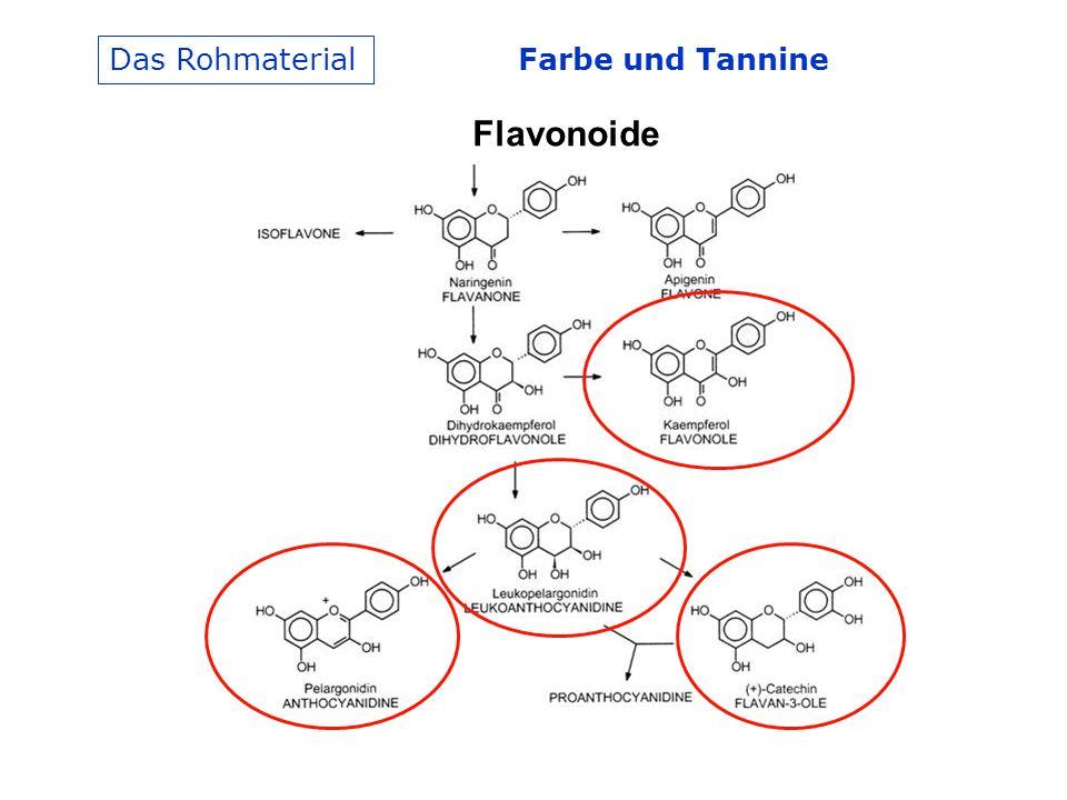 Das Rohmaterial Farbe und Tannine Flavonoide