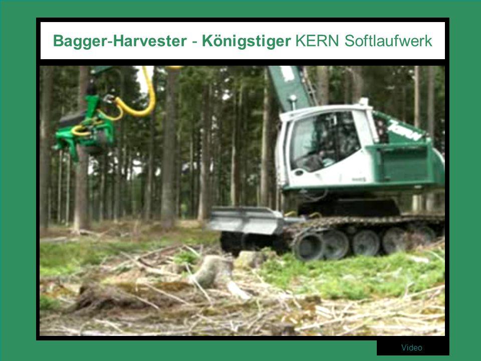 Bagger-Harvester - Königstiger KERN Softlaufwerk