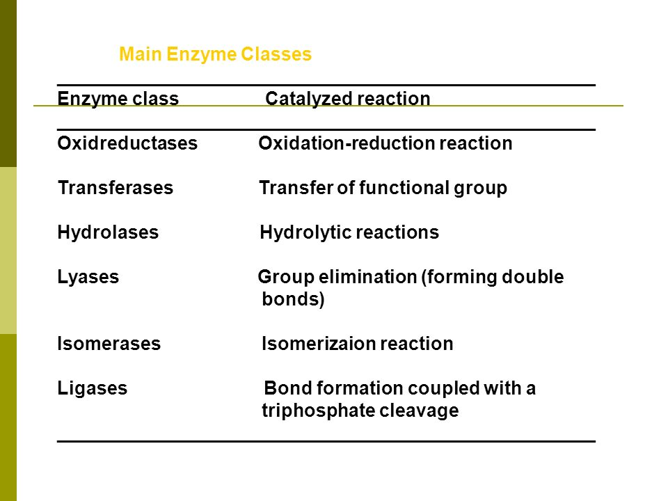 Main Enzyme Classes ____________________________________________________. Enzyme class Catalyzed reaction.